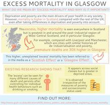 What is excess mortality 2016